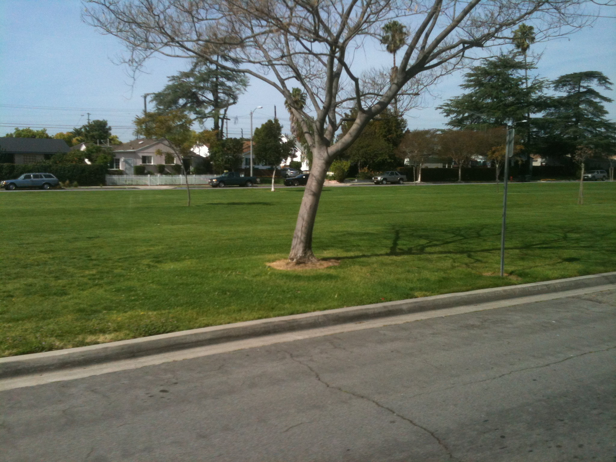 Amelia Earhart Park North Hollywood North Hollywood Whitnal Park