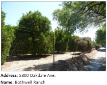 Bothwell Ranch is a rare remnant of the area's agricultural past. It has been an active farm since 1926 and is the last remaining commercial citrus orchard in the south San Fernando Valley.